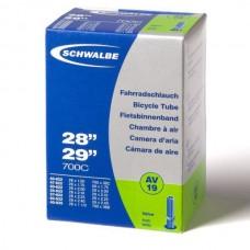 Schwalbe Schrader AV 19